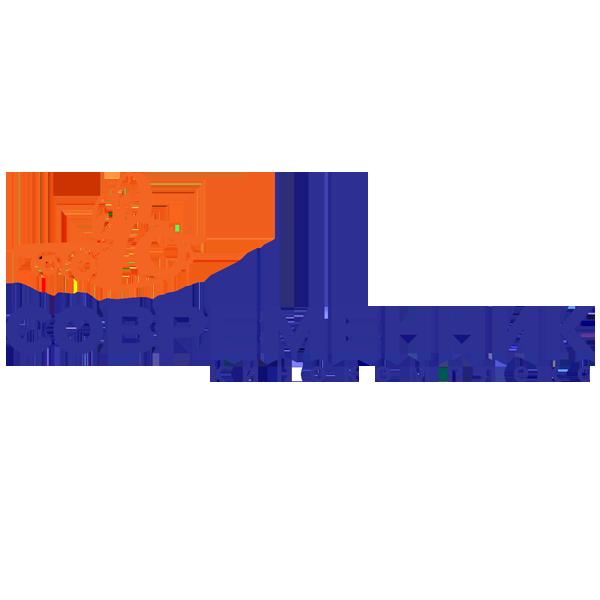 https://dlpp.ru/wp-content/uploads/2019/01/современик.png